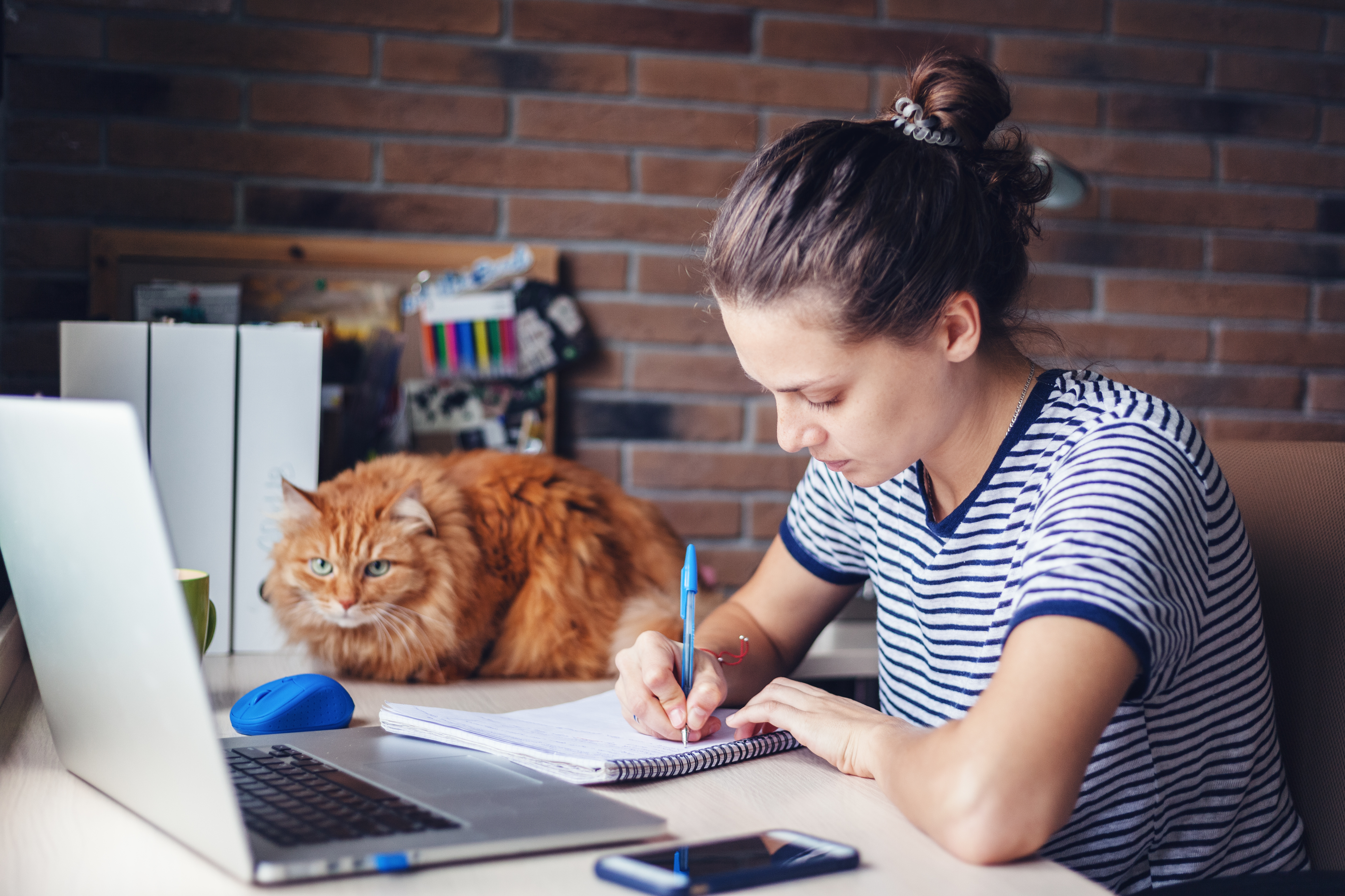 6 nippi, kuidas kodukontoris efektiivsemalt töötada